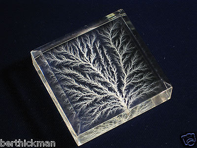 "Beveled High Voltage ""Captured Lightning"" Lichtenberg Figure Beam Tree sculpture"