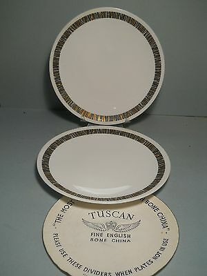 Fine Bone China by Tuscan of England Lot Of 2 Dinner Plates by  Tuscan Cascade