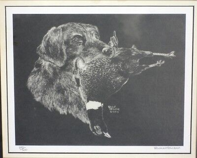 Framed & Matted German Wirehaired Pointer print, Signed & Numbered, Award Winner
