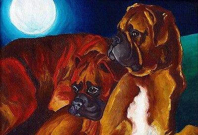 13x19 BOXER NIGHT Fawn Brindle Signed Dog Art PRINT of Original Painting by VERN