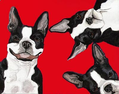 BOSTON TERRIER 3 Dogs Red Signed 8x10 Dog Art PRINT of Original Painting VERN