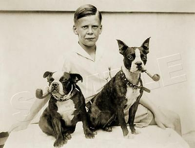 Boy Antique Boston Terrier Dog Pipe Vintage 1933 Canine Photo *canvas* Art Print