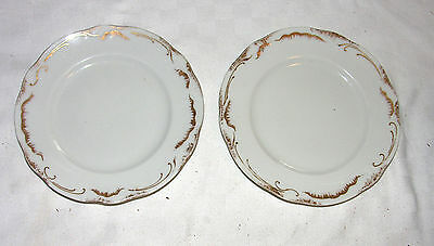 """Syracuse SY445 Two 7"""" Salad Plates - White with Gold trim & highlights"""