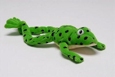 Read Write Inc. Fred the Frog - Toy; Miskin, Ruth, Reading - 9780199116546