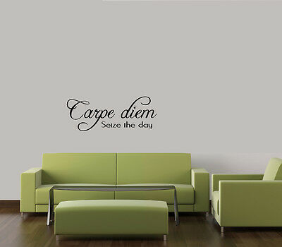 CARPE DIEM--SEIZE THE DAY WALL DECAL WORDS  STICKER ART  HOME DECOR  LETTERING