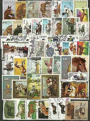 HORSES Collection Packet of 50 Different WORLD Stamps featuring HORSES