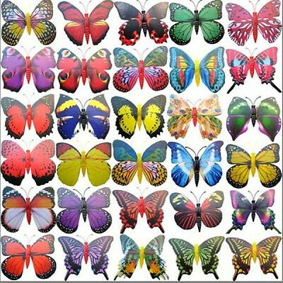 Mini very Small 50piece Magnet Butterfly 5~6CM Decoration Great For frigerator