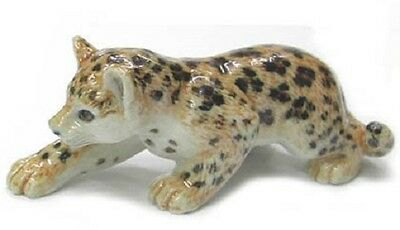 R284C Northern Rose Miniature Leopard Cub - Stalking