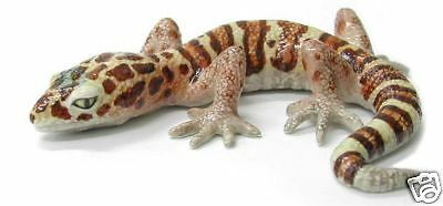 R173 Northern Rose - Western Banded Gecko