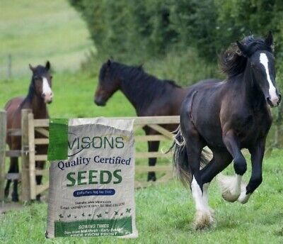 Horse Pony Gateway Repair Paddock Overseed Pastures Ivisons Grass Seed New