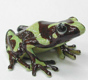 R166 - Northern Rose Miniature - Poison Dart Frog