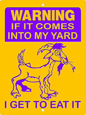 GOAT SIGN, Aluminum Sign,Animals,Farm sign,Pigs,chickens,horses,llama,Goats,G1