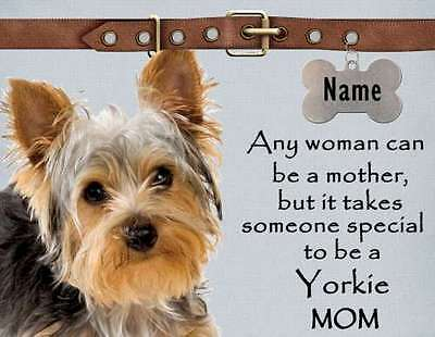 YORKSHIRE TERRIER Mom Magnet.  It Takes Someone Special To Be A Yorkie Mom