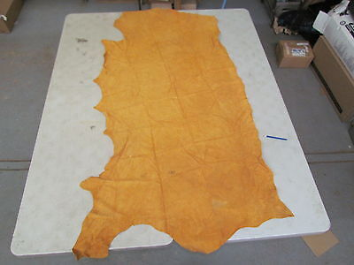 "Commercialy Well Tanned 75""x40"" Measuring Super Soft Moose Hide Good For Gloves"
