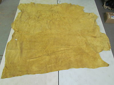 "Native American Moose Hide Measurs 58""x56"" Fairly Square Soft Commercialy Tanned"