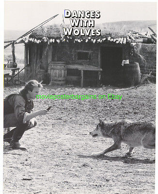 DANCES WITH WOLVES LOBBY CARD size 11x14 MOVIE POSTER Card #2 KEVIN COSTNER 1990