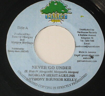 "7""/jamaica/ultimate Shines/dem Tell Lie/heritage/anthony B/kelly/never Go Under"