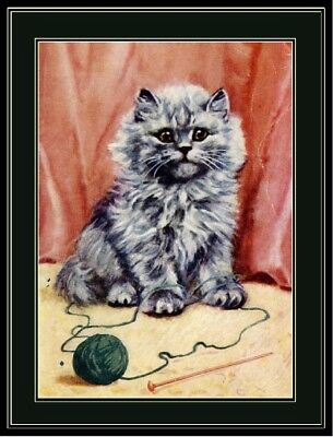 Picture Persian Kitten Cat Art Print
