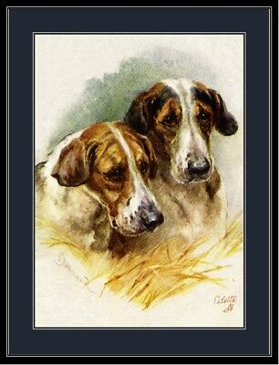 English Print Fox Hound Dog Duo Art Picture