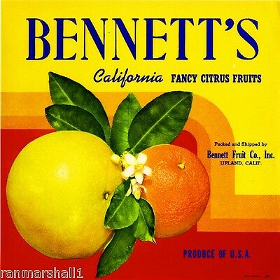 Upland San Bernardino Bennett's Grapefruit Citrus Fruit Crate Label Art Print