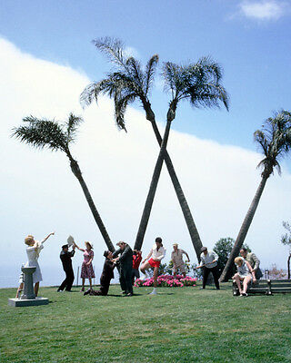 It'S A Mad Mad Mad Mad World Rare Color Cast By Big 'W'' Palm Trees16X20 Photo