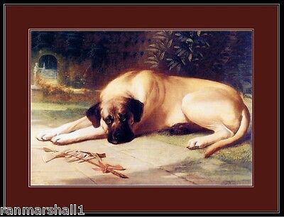 English Picture Print Bullmastiff Dog Dogs Puppy Puppies Vintage Poster Art
