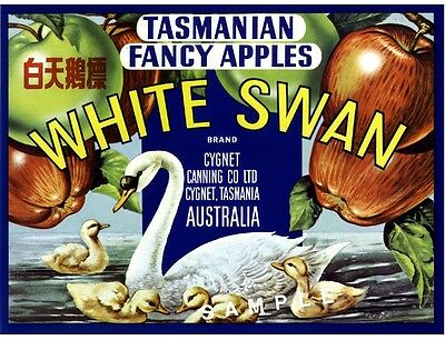 Tasmania Australia White Swan Bird Apple Fruit Crate Label Art Print