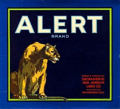 Sacramento Alert Cougar Mountain Lion Orange Citrus Fruit Crate Label Art Print