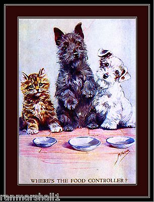 Picture Print Tabby Kitten Cat Scottish Sealyham Terrier Puppy Dog Art Poster