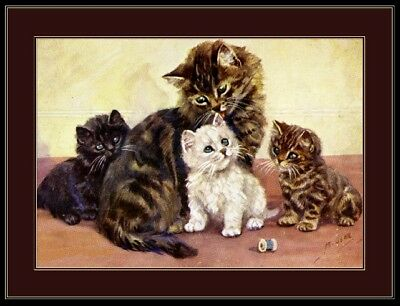 English Picture Long Hair Tabby Cat Kittens Art Print