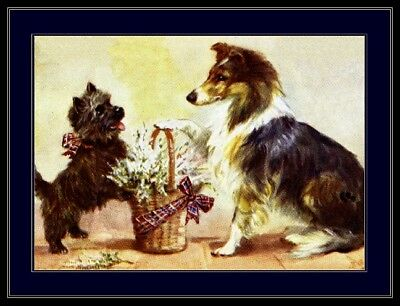 English Picture Print Cairn Terrier Collie Puppy Dog Dogs Puppies Poster Art