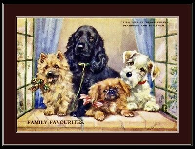 Print Cairn Terrier Cocker Spaniel Dog Art Picture