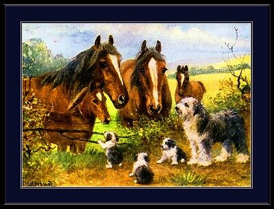 Old English Print Sheepdog Dog Puppy Dogs Puppies Horse Art Vintage Poster