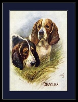 English Print Beagle Puppy Dogs Art Picture