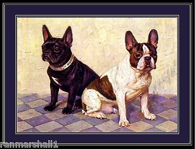 English Picture Print French Bulldog Dog Dogs Puppy Puppies Vintage Poster Art
