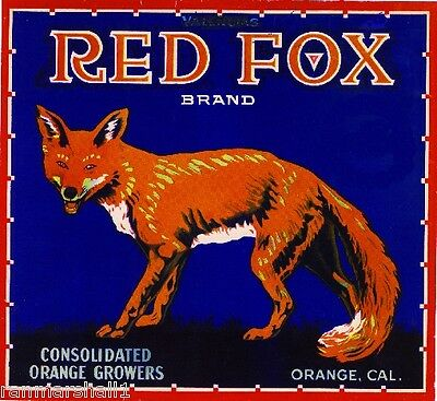 Orange County California Red Fox Orange Citrus Fruit Crate Label Art Print