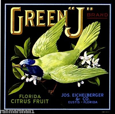 Eustis Florida Green J Bird Orange Citrus Fruit Crate Label Vintage Art Print