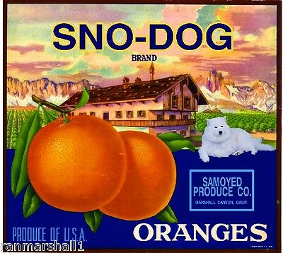 Marshall Canyon Samoyed Sno-Dog Dog Orange Citrus Fruit Crate Label Art Print