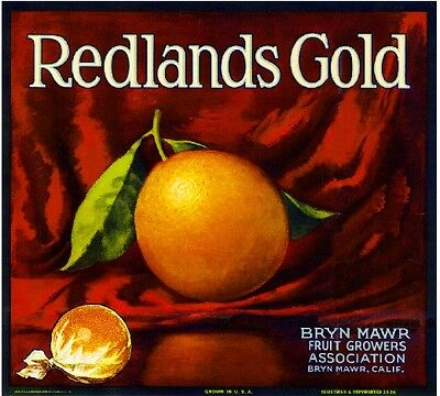Bryn Mawr Redlands Gold Orange Citrus Fruit Crate Label Art Print