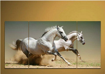 """Handicraft Modern Abstract Huge Canvas Art Oil Painting """"white horses"""""""
