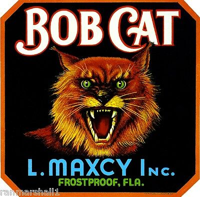 Frostproof Florida Bob Cat Orange Citrus Fruit Crate Box Label Art Print