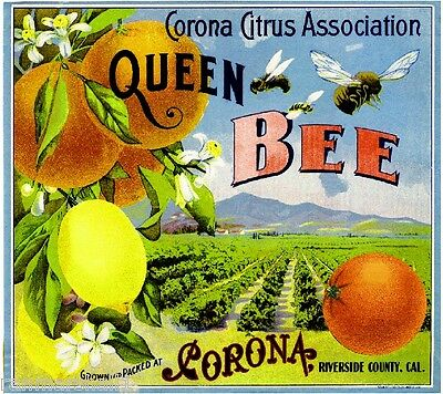 Corona Riverside County Queen Bee #2 Orange Citrus Fruit Crate Label Art Print
