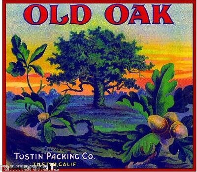 Tustin Orange County Old Oak Orange Citrus Fruit Crate Label Art Print
