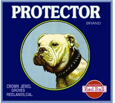 Redlands Protector Bulldog Dog Orange Citrus Fruit Crate Label Art Print