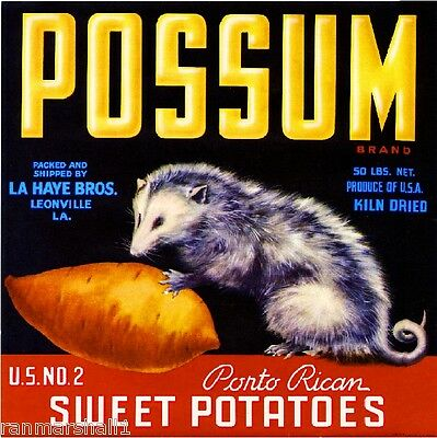 Leonville Louisiana Possum Sweet Potato Crate Yam Yams Vegetable Label Art Print