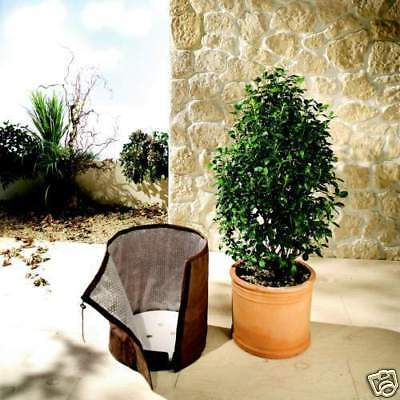 BioGreen 1x Pot protection KS 50 XL Thermoplus Winter Cold Screen