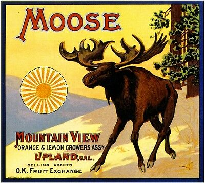 Upland San Bernardino Moose Orange Citrus Fruit Crate Label Vintage Art Print