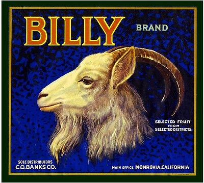 Monrovia Los Angeles Billy Goat Orange Citrus Fruit Crate Label Art Print