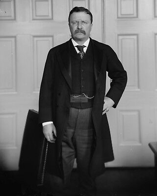 Theodore Roosevelt 26Th President Of The United States - 8X10 Photo (Aa-053)