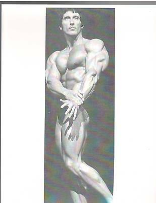 FRANK ZANE Pro NABBA Mr Universe Muscle Bodybuilding Photo B+W